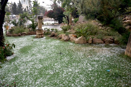 Hails size of chickpeas turned some places white in Nicosia. - May 2020
