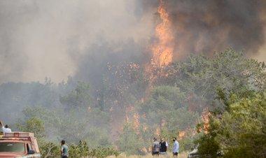 http://cyprustodayonline.com/hit-by-seventy-fires
